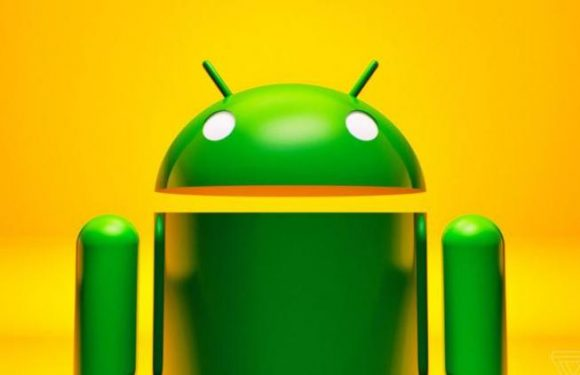 Android LinearLayout Alt Kenarlık Ekleme – Android LinearLayout Border Only Bottom